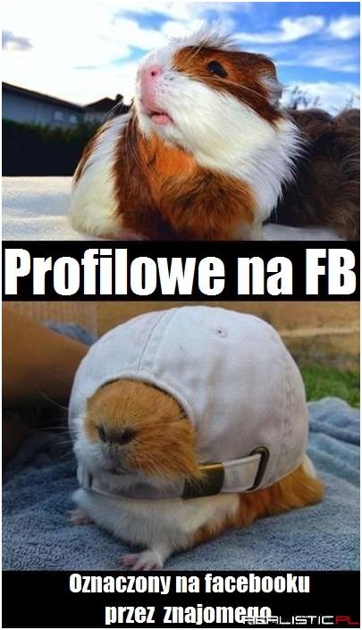 sympatia zaloguj przez fb Bydgoszcz