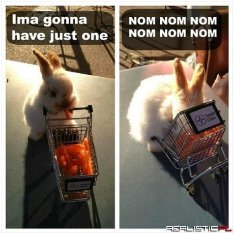 Baby Carrots Are Too Tempting for a Baby Bunny