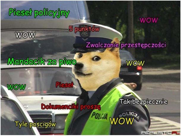 piesel_policyjny_2013-09-19_15-31-48.jpg