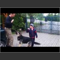 W końcu rękę mu upi*rdoli! Ojciec roku uczy psa jak bronić dziecko :D
